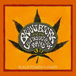 Brant Bjork And The Low Desert Punk Band - Black Power Flower, HQ180G 2014